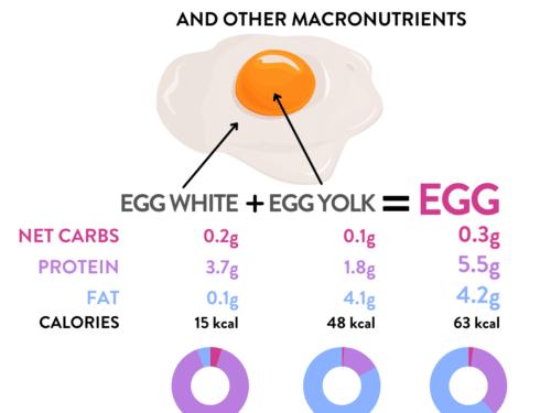 Carbs In Eggs