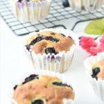 Keto Coconut Flour blueberry muffins