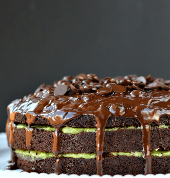 Chocolate Cake with Peppermint Coconut Cream - SWEETASHONEY